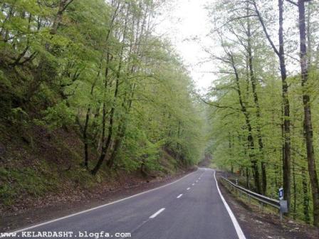 جاده جنگلی کلاردشت-عباس آباد